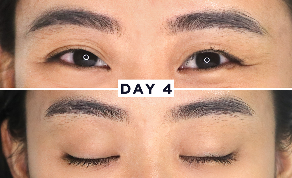 What Happens When You Use A Brow Lash Serum For 1 Week Bloom