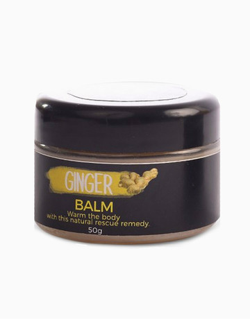 Ginger Rx Balm by Zenutrients