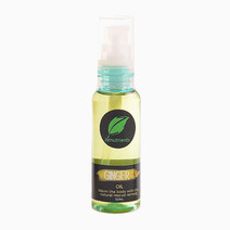 Ginger Rx Spray Oil by Zenutrients