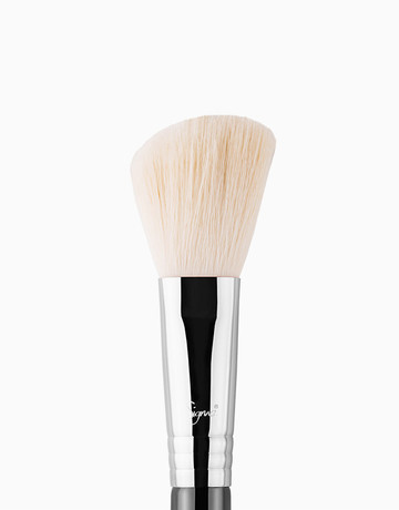Large Angled Contour Brush by Sigma