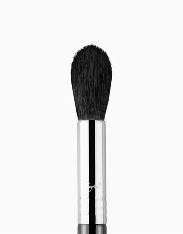 Tapered Highlighter Brush by Sigma