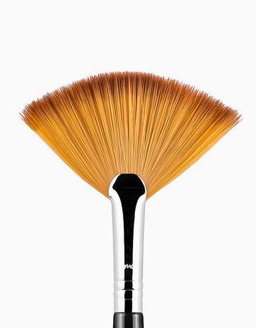 Fan Brush by Sigma