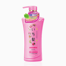 Ichikami Revitalizing Shampoo by Kracie in