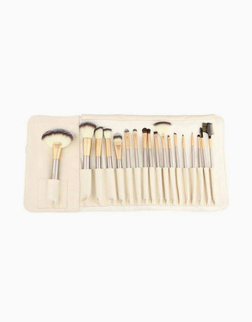 18pc Brush Set w/ Case by Brush Work