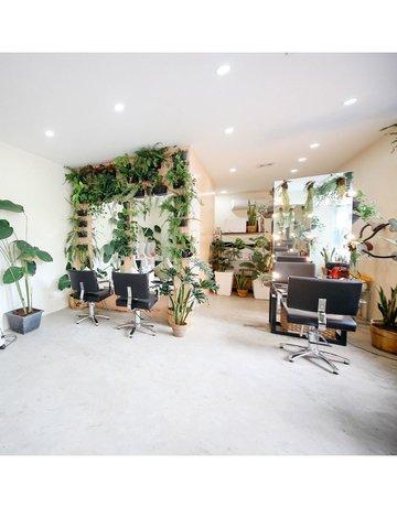 Benibana beauty hub interiors