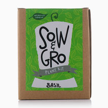 Basil Plant Kit by Sow and Gro