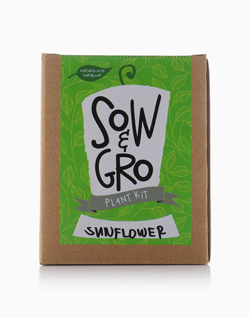Sunflower Plant Kit by Sow and Gro
