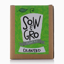 Cilantro Plant Kit by Sow and Gro