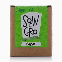 Basil Seedling Kit by Sow and Gro