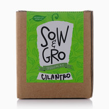 Cilantro Seedling Kit by Sow and Gro