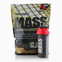 Mass Gainer with Pill Shaker (11lbs) by Promatrix 7