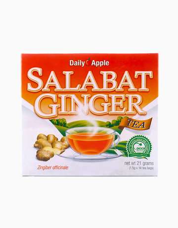 Salabat-Ginger Tea by Daily Apple