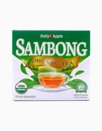 Sambong Tea by Daily Apple