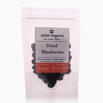 Dried Blueberries (70g) by ASAB Organics