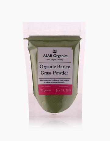 Barley Grass Powder (Raw) (70g) by ASAB Organics