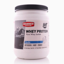 Vanilla Whey Protein (24 Servings) by Hammer Nutrition