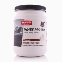 Chocolate Whey Protein (24 Servings) by Hammer Nutrition