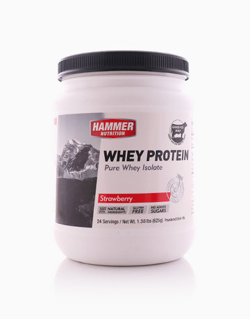 Strawberry Whey Protein (24 Servings) by Hammer Nutrition