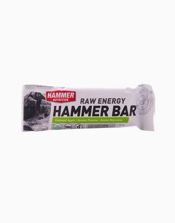 Oatmeal Apple Hammer Bar by Hammer Nutrition