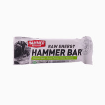 Oatmeal Apple Hammer Bar by Hammer Nutrition