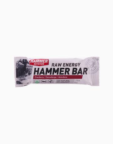 Cranberry Hammer Bar by Hammer Nutrition