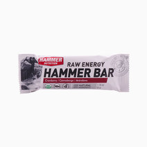 Cranberry Hammer Bar by Hammer Nutrition