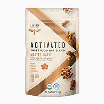 Livingintentions activated superfood nut blend malted maple