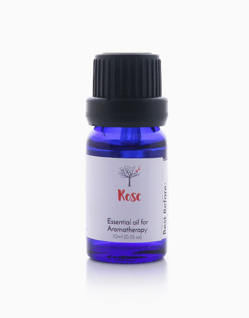 Rose Essential Oil (10ml) by Bathgems