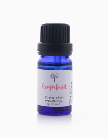 Grapefruit Essential Oil (10ml) by Bathgems