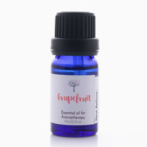Grapefruit Essential Oil (10ml) by Bathgems
