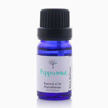 Peppermint Essential Oil (10ml) by Bathgems