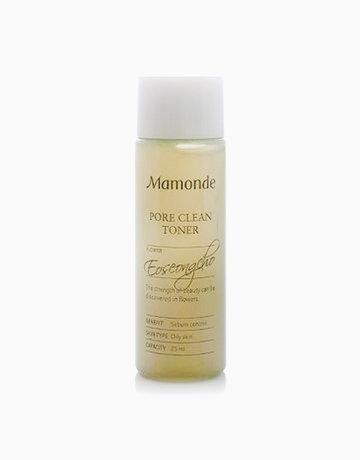 Pore Clean Toner (25ml) by Mamonde