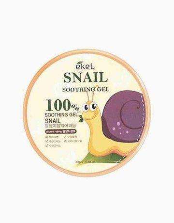 Snail Gel by Ekel