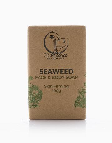 Seaweed Soap (100g) by Milea