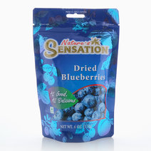 Dried Blueberries by Nature's Sensation