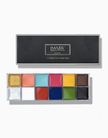 12-Flash Color Palette by Imagic