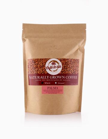 Palma Blend Coffee (Whole) by Café-te-ría