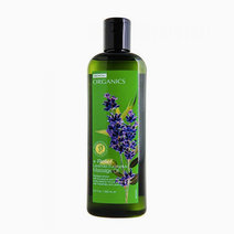 Organics: Lavender Eucalyptus Massage Oil by BENCH