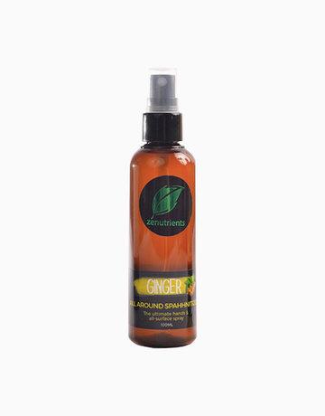Ginger Sanitizer 100ml by Zenutrients