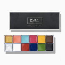 12-Flash Color Palette by Imagic