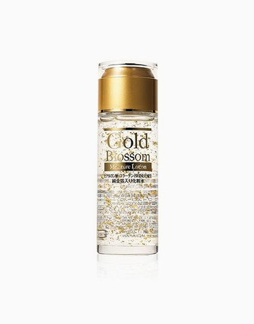 Gold Blossom Moisture Lotion by Hadariki