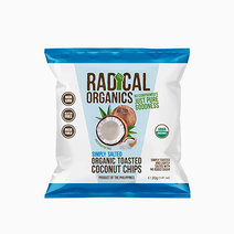 Simply Salted Flavor Organic Toasted Coconut Chips (20g) by Radical Organics in