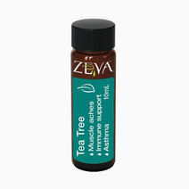 Zeva tea tree pure organic essential oil  medicinal grade treatment for acne  psoriasis  infection. house molds or mildew (10ml)