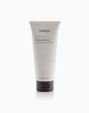 Rose Moisture Plus Cleanser by Jurlique