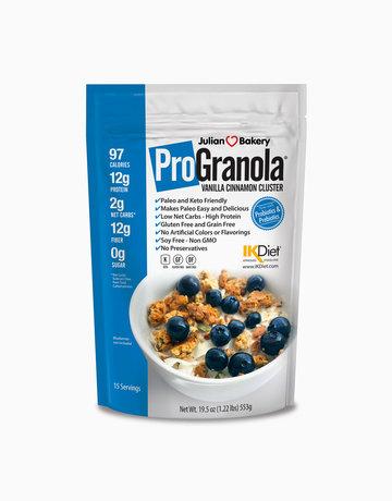 ProGranola Protein Cereal: Vanilla Cinnamon Clusters by Julian Bakery