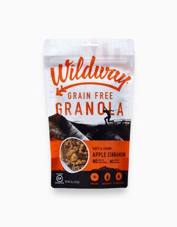 Apple Cinnamon Grain-Free Granola  by Wildway
