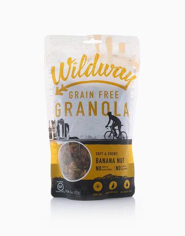 Banana Nut Grain-Free Granola by Wildway
