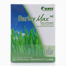 Barley Max NZ Food Supplement | Organic Barley Grass from New Zealand (10x3 grams) by Optimum Nutrition in