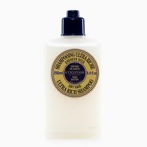 Shea Butter Shampoo by L'Occitane