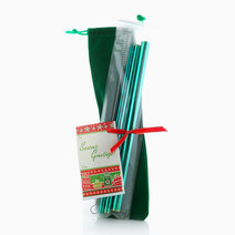Christmas Edition Stainless Steel Straw Set by TRVLR